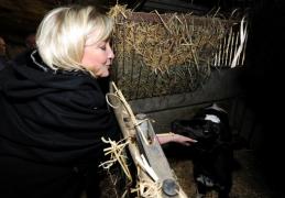 Merdrignac : Marine Le Pen  visite une exploitation laitière bio