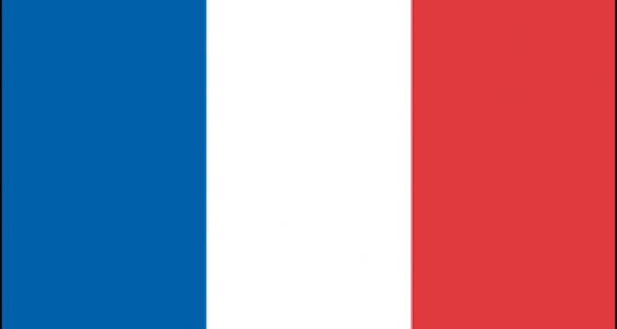Elections départementales: des résultats mensongers !