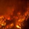 Ille-et-Vilaine : Risque de feux de forêts